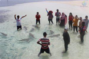 Paket Wisata Raja Ampat 4 Hari 3 Malam di Korpak Resort